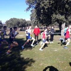 cross villalba (14)