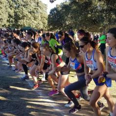 cross villalba (15)
